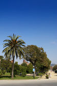 Park Ciutadella — Stock Photo