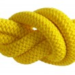 Yellow knot — Stock Photo #1597675