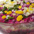Russian herring salad — Stockfoto
