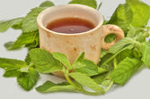 Cup of tea useful to health — Stock Photo