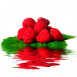 Royalty-Free Stock Photo: Raspberries in water