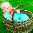 Stock Photo: Baby girl in basket eating apple