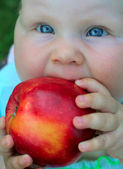 Cheerful baby with red apple in hands — Stock Photo