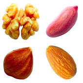 Set of nuts — Stock Photo