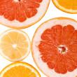 Lemon, orange and grapefruit — Stock Photo
