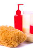 Natural sponge, soap and body lotion — Stock Photo