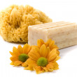 Natural sponge, soap and flowers — Stock Photo