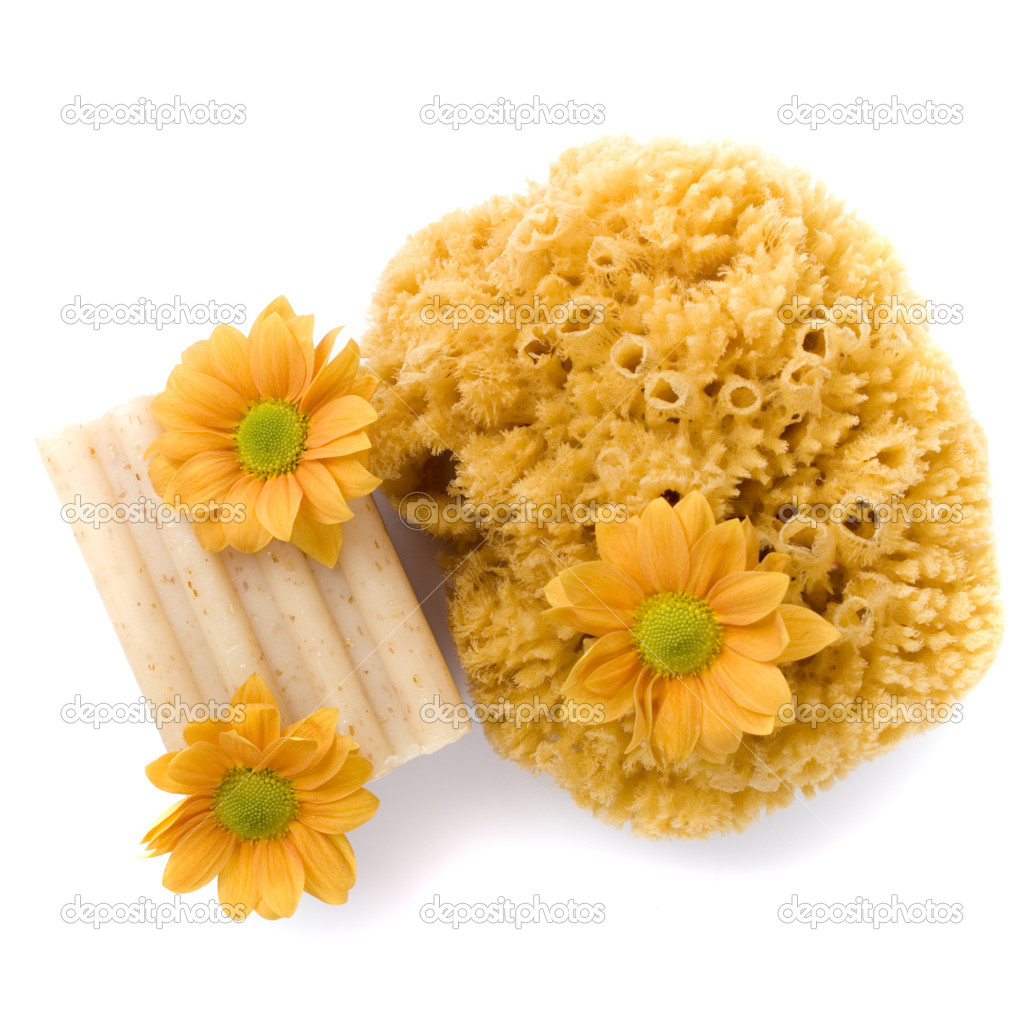 Natural sponge, soap and flowers on white background — Stock Photo #1040370