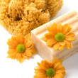 Natural sponge, soap and flowers — Stock Photo #1069575