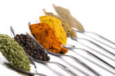 Various spices — Stock Photo
