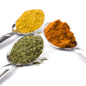 Metal spoons with spices — Stock Photo