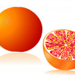Stock Vector: Grapefruit