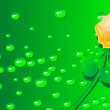 Royalty-Free Stock 矢量图片: Golden Rose