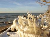 Início do inverno — Fotografia Stock