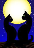 猫夫妇 — 图库矢量图片