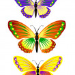 Butterfly — Stock Vector #1270160