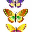Stock Vector: Butterfly