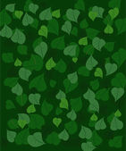 Background leaves3 — Stock Vector