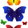 Stock Vector: Bright butterflies