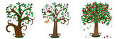 Trees seasons — Stock Vector