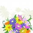 Bouquet Wildflowers — Stock Vector #1746376