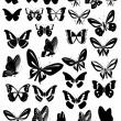 Butterflies Party — Stock Vector