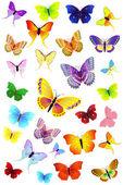 Butterflies Party2 — Stock Vector