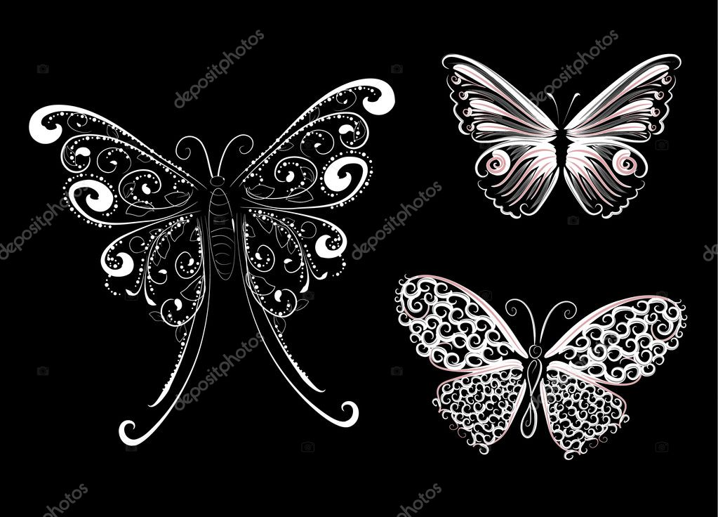 White lace butterfly — Stock Vector #2320076
