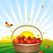 Basket of apples in the meadow — Stock Vector
