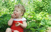 Child eats a strawberry — Stock Photo