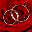Flower a rose, two wedding rings - Stock Photo
