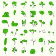 Royalty-Free Stock Vector: Vectorial trees in summer
