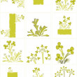 Stock Vector: Floral background collection