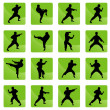 Icons of karate on the green. — Stock Vector