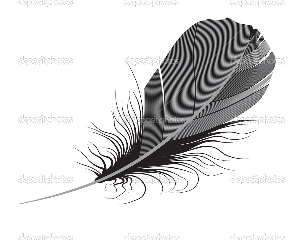 Feather on a white background.vector — Stock Vector #1045771