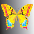 The butterfly. Vector illustration — Stock Vector