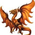 Flying dragon.Vector illustration — Stock Vector