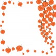 Royalty-Free Stock Vectorielle: Beautiful orange flowers.Vector illustra