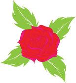 фон из розы.векторная illustrati — Cтоковый вектор