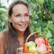 Beautiful woman in the garden with apple - Stock Photo