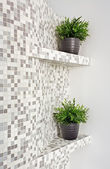 Part of interior with mosaic and plant — Stock Photo