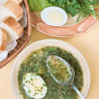Green chicken soup with egg — Stock Photo