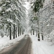 winter road im verschneiten wald — Stockfoto