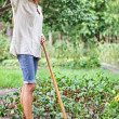 Tired young woman with hoe working - Stock Photo