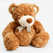 Furry teddy bear - Stock Photo