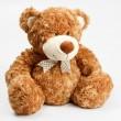 Furry teddy bear — Stock Photo