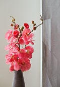Pink orchid flowers in wicker withe vase — Stock Photo