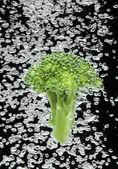 Green broccoli falling in water — Stock Photo