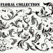 Stock Vector: Floral collection