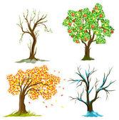 árboles en las estaciones — Vector de stock